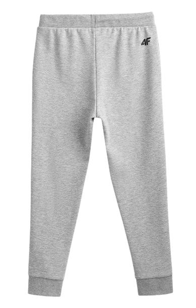 Spodnie dresowe chłopięce 4F JSPMD001A szare