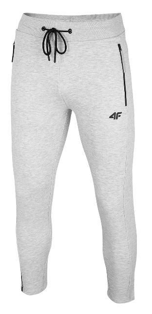 Spodnie męskie dresowe 4F SPMD010 szare