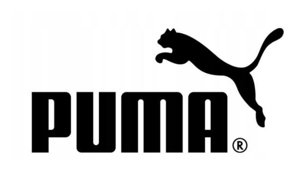 T-shirt męski PUMA BIG LOGO 581386 02 biały